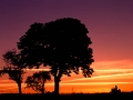 Harz_Sonnenuntergang.jpg
